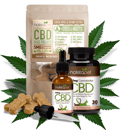 Holistapet review part I: How many disease CBD for pets can help?