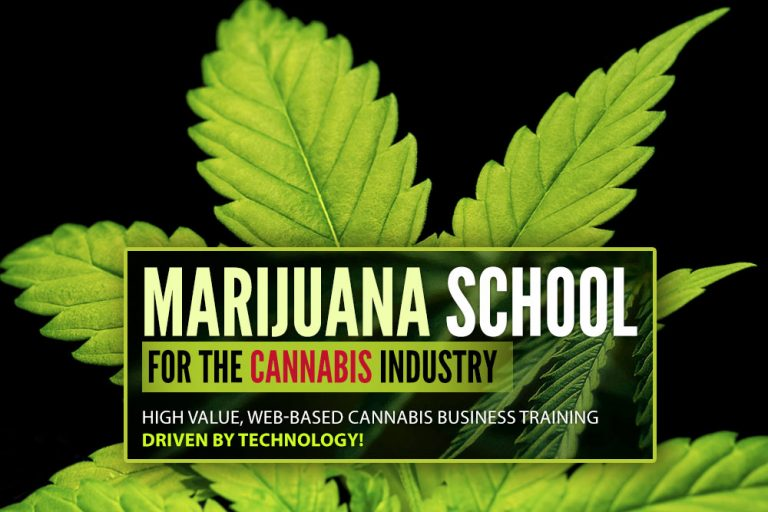 Green CulturED Review – Best Online Cannabis College Education
