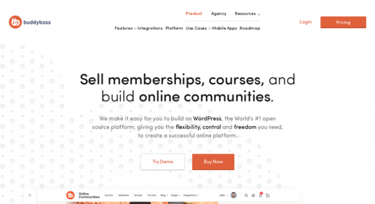 BuddyBoss Review – Creating online communities with WordPress