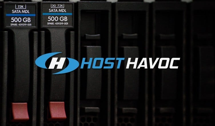 Host Havoc review | For cost-friendly game server hosting