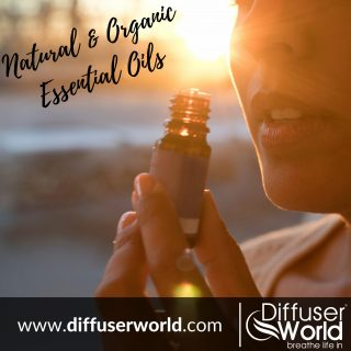 Best Method To Use Essential Oils - Diffuser World Review