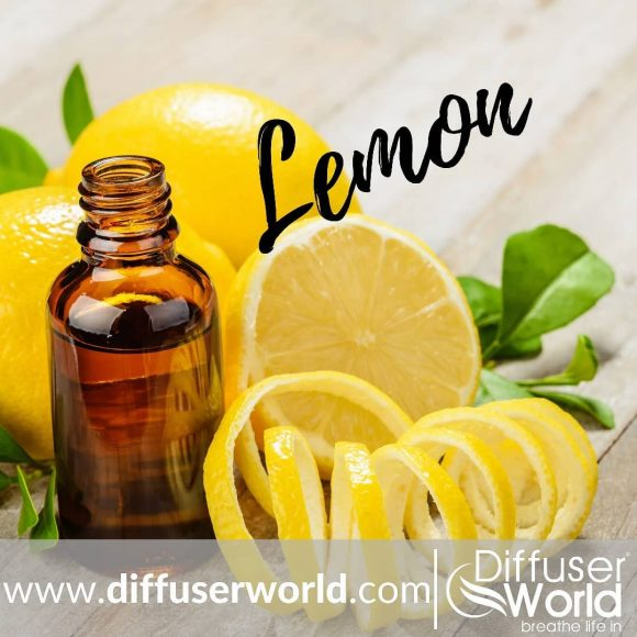 Diffuser World Review – Effective Way To Use Essential Oil