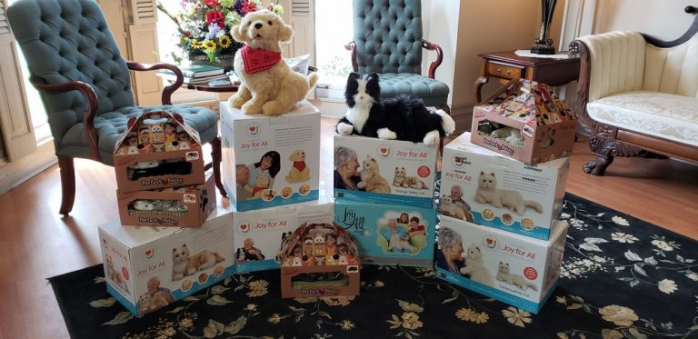 Joy For All review – Fun products for older adults