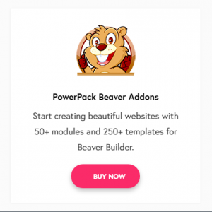 Wp Beaver Addons Review – 6 Features To Make Your Site Difference