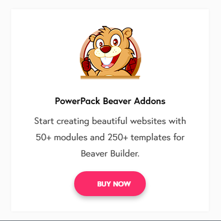 Wp Beaver Addons Review – 6 Features Make A Difference To Your Site