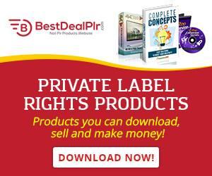 What Is PLR Product - Bestdealplr Review