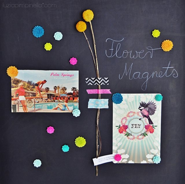 Umagnets Review