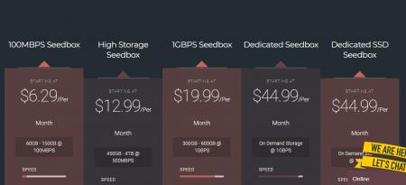 SnTHostings Seedbox review - Price