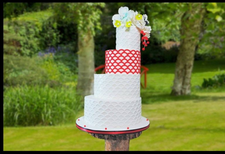 Cake Stackers Review: Easier And Faster To Make The Cakes