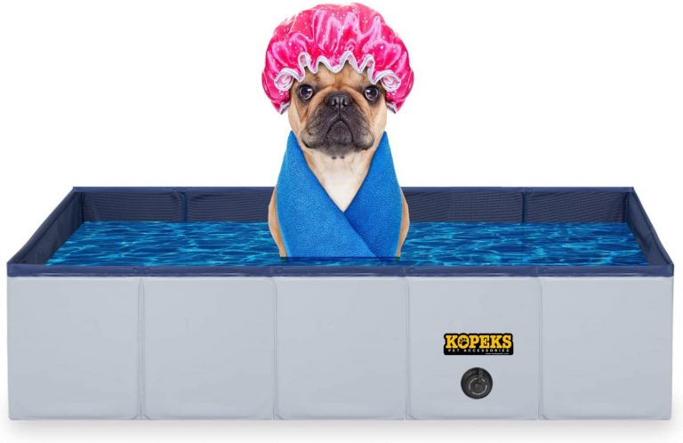 Kopeks Review: Top #1 Shop for Pet Pools and Other Accessories